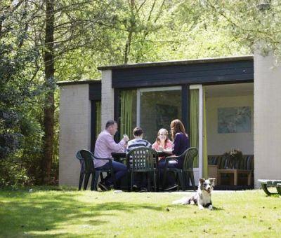 Vakantiewoningen huren in Westerhoven, Noord Brabant, Nederland | Comfort Bungalow voor 4 personen