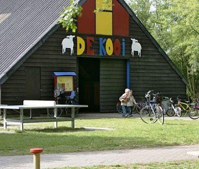 Chalets huren in Ruinen, Drenthe, Nederland | vakantiehuisje voor 4 personen