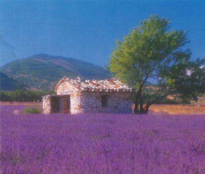 Vakantiewoningen huren in Aurons, Provence-Alpen-Côte d'Azur Bouches-du-Rhône, Frankrijk | vakantiehuis voor 3 personen