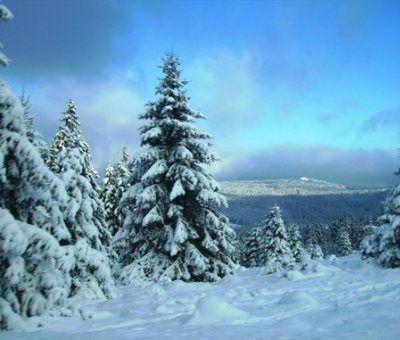 Vakantiewoningen huren in Zellerfeld, Harz, Duitsland | vakantiehuis voor 4 personen