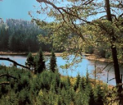 Vakantiewoningen huren in Larvik, Vestfold, Noorwegen | vakantiehuisje voor 4 personen