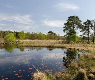 Chalets en stacaravans huren in Herkenbosch, Roermond, Limburg, Nederland   vakantiehuisje voor 4 personen