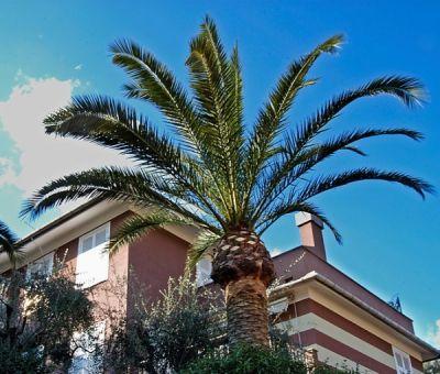 Vakantiewoningen huren in Rapallo, Ligurië, Italië | vakantiehuis voor 6 personen